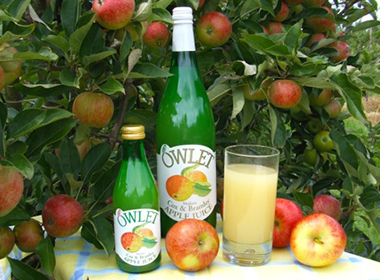 owlet-fruit-juice